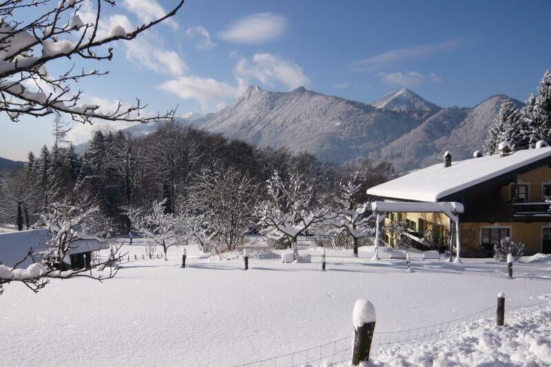 Gästehaus Bauer im Winter (10)