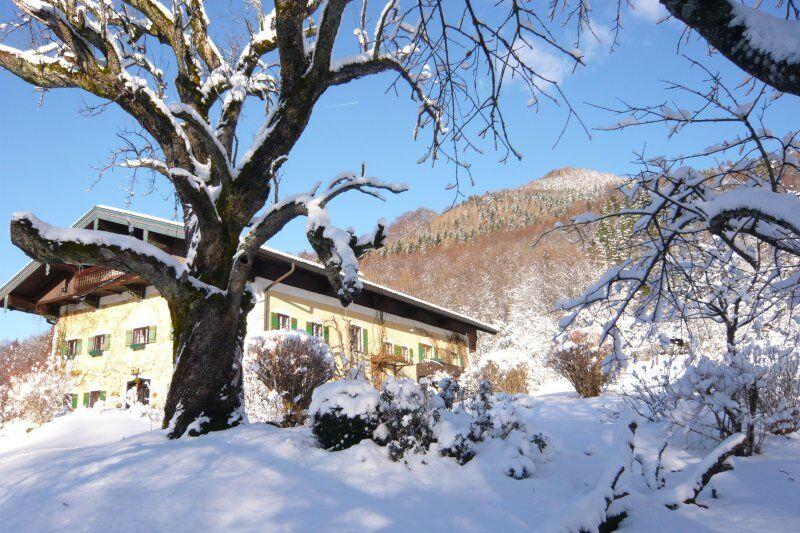 Gästehaus Bauer im Winter (4)