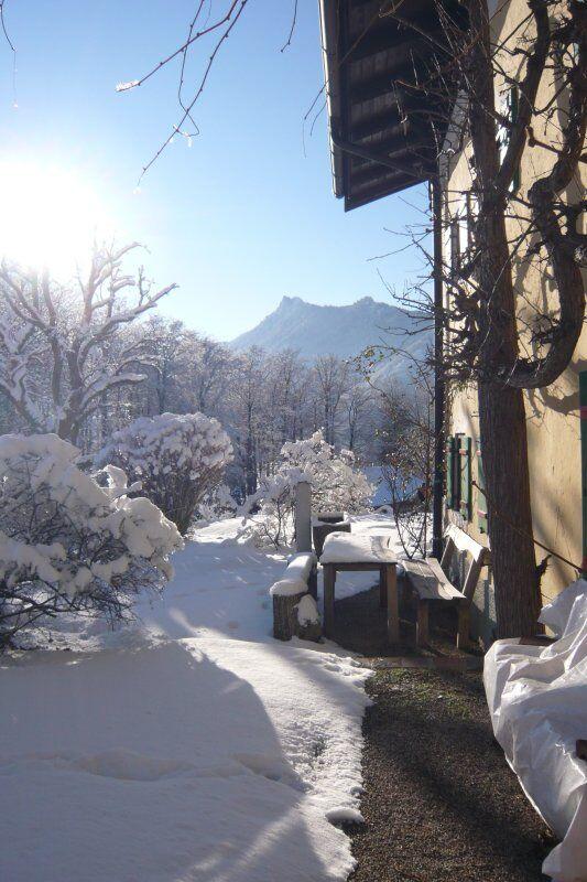 Gästehaus Bauer im Winter (7)