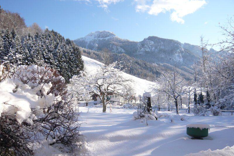 Gästehaus Bauer im Winter (8)