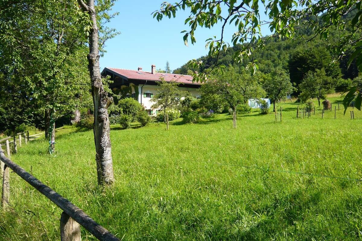 Garten Gästenhaus Bauer (3)