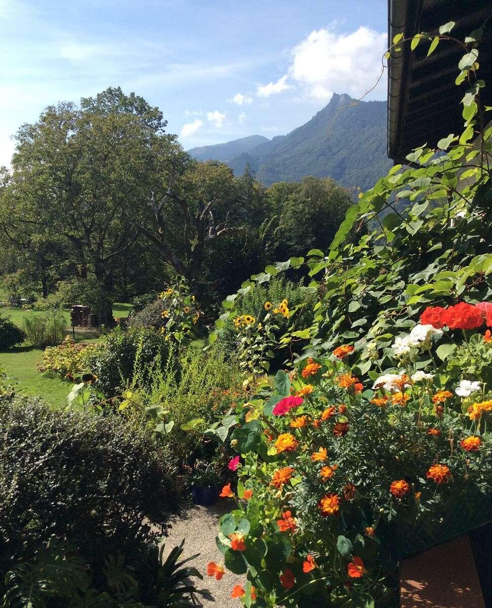 Garten Gästenhaus Bauer (7b)